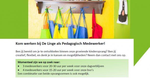 vacatures pedagogisch medewerkers de Linge