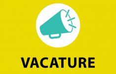 Vacature onderwijsassistent januari 2021
